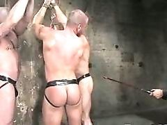 Gay,Gay BDSM,Gay,Gay BDSM,bound Bound muscled gay...