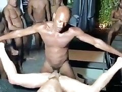 Black (Gay);Bareback (Gay);Big Cock (Gay);Gangbang (Gay);Group Sex (Gay);Old+Young (Gay);Gay Bareback (Gay);Gay Orgy (Gay);Gay Group (Gay);Gay Family (Gay);Anal (Gay);American (Gay) Bareback gay orgy...