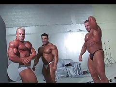 Muscle (Gay) 3 MUSCLEDADS